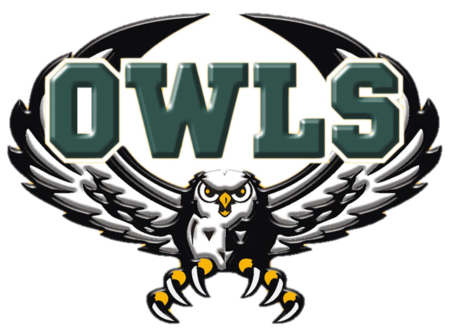 Owl 2013 without white background.png