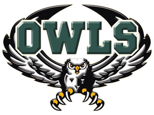 Owl 2013.jpg