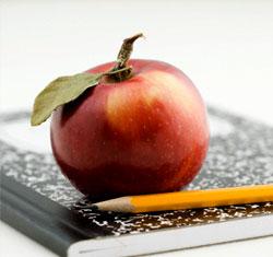 notebookapple.jpg