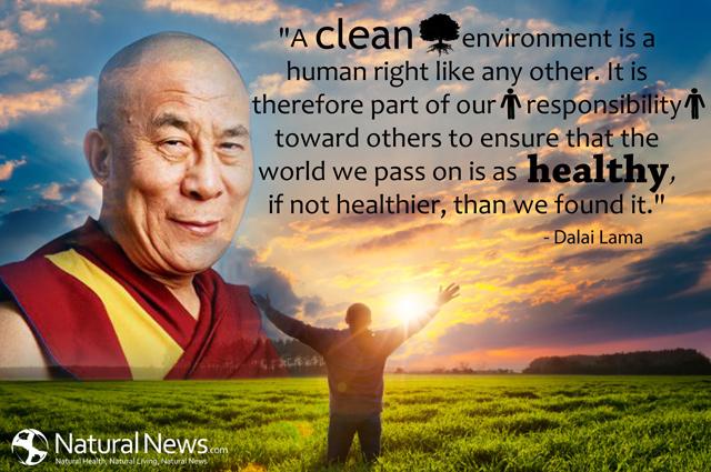 Quote-A-Clean-Environment-Dalai-Lama.jpg